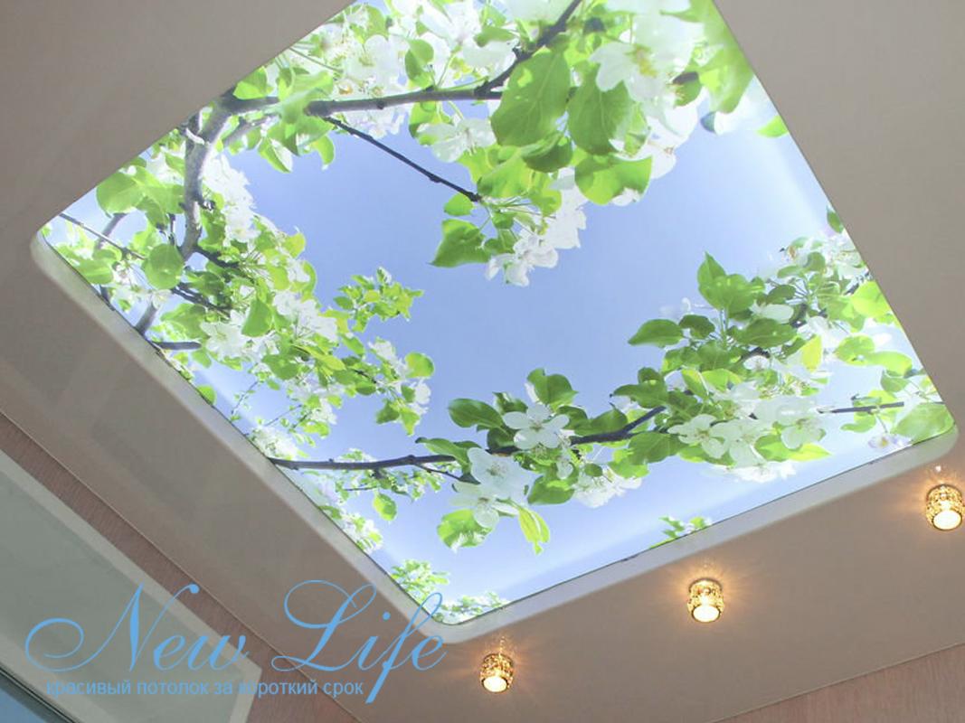 арт печать на опале с OLED подстветкой в двухуровневом потолке