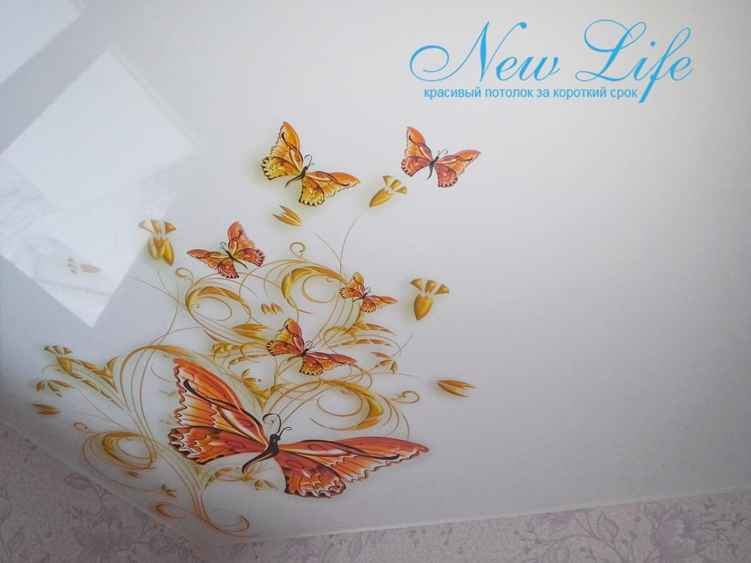 арт печать  с бабочками на матовой фактуре потолка