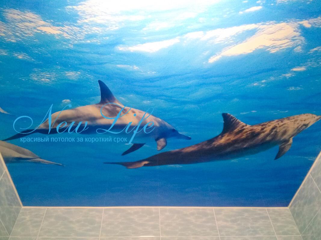 потолок с арт печатью подводный мир №29