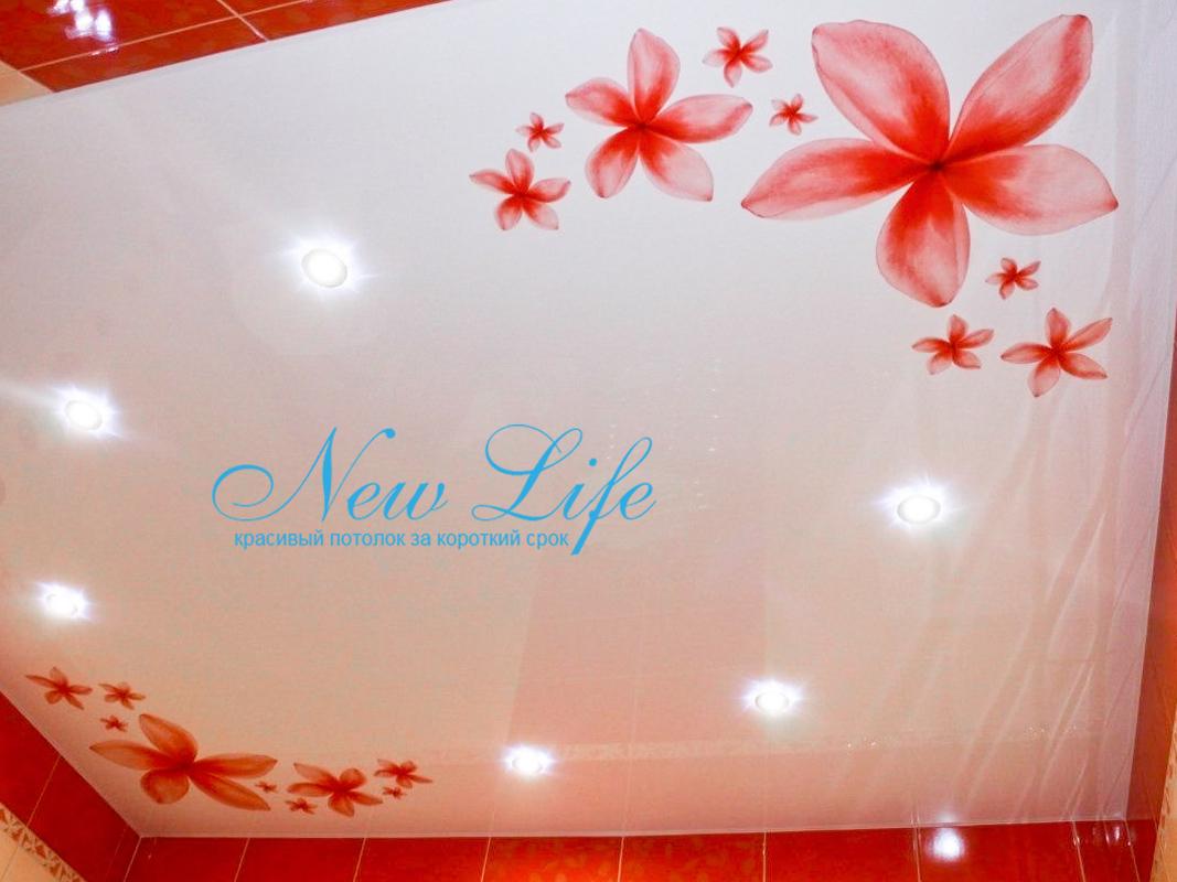 сочетание цветов плитки и арт печати на потолке