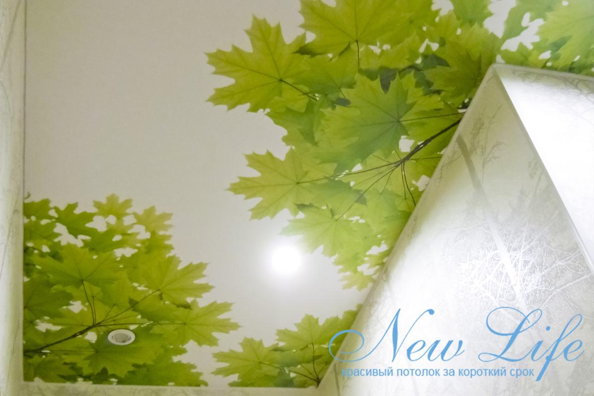 Коллаж по заказу клиента на матовой фактуре потолка