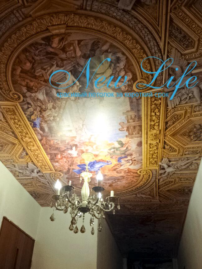 """Арт печать """"Искусство"""" на матовом потолке"""