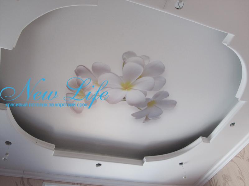 Фотопечать на натяжном матовом двухуровневом потолке - цветы