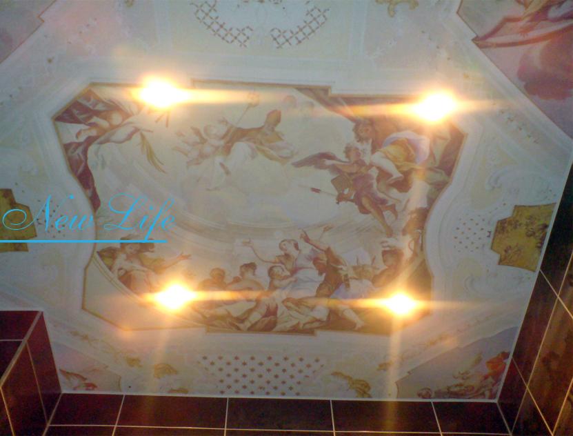 Фотопечать Искусство на матовом натяжном потолке в ванной рис. 54 из каталога Искусство