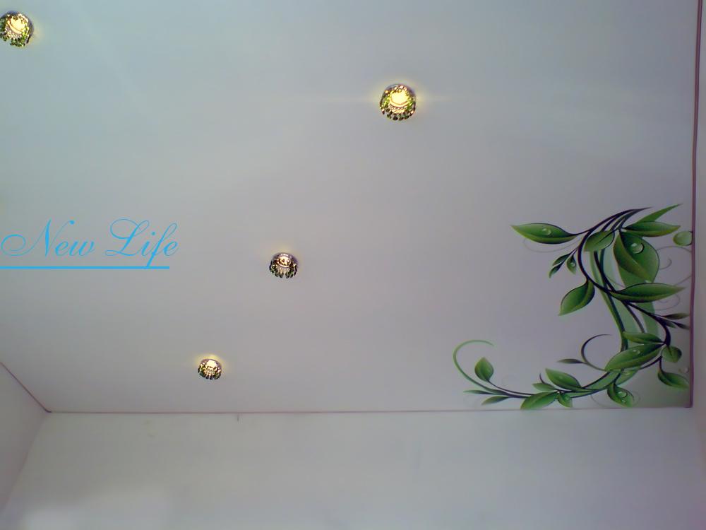 Фотопечать на натяжном потолке- декор в углах комнаты- ветви зелени рис. из каталога Орнаменты 176