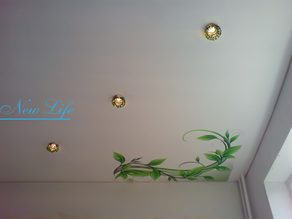 Фотопечать на натяжном потолке зеленых ветвей растения рис. из каталога Орнаменты 176