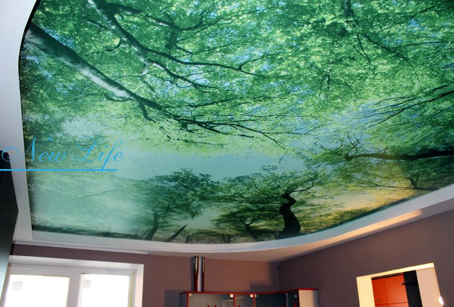 Фотопечать Природа на сатиновом натяжном потолке в комнате
