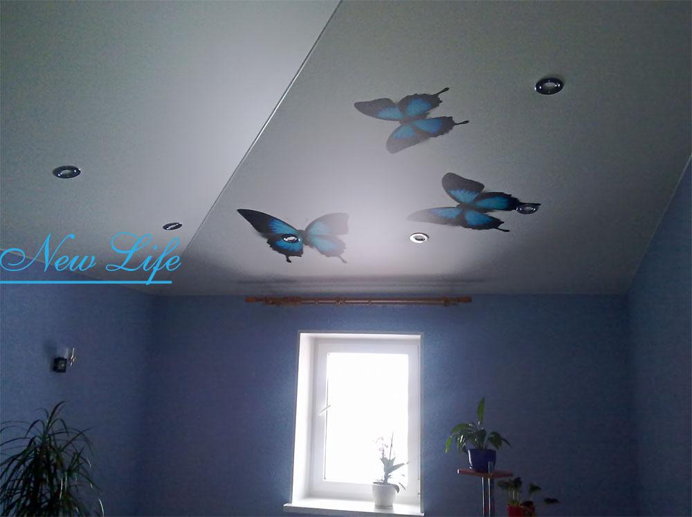 Фотопечать бабочки на матовом натяжном потолке с горящими потолочными светильниками рис. 43 из каталога Бабочки