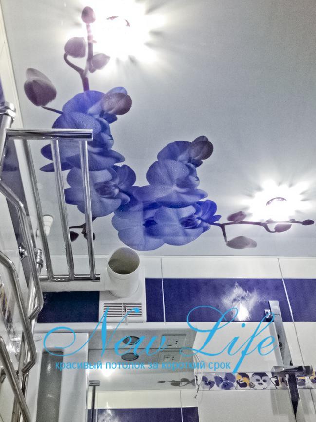 изображение сиреневых орхидей на арт потолке