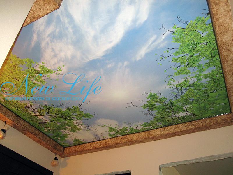 Фотопечать на натяжном потолке- полная заливка, дизайнерский коллаж небо и деревья
