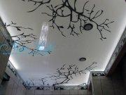 Фотопечать на натяжном лаковом потолке со светодиодной подсветкой деревья