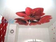 Фотопечать Цветы на лаковом (глянцевом) натяжном потолке в ванной рис. 6 из каталога Цветы