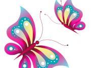 бабочки (70)