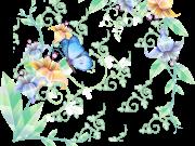 бабочки (72)
