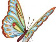 бабочки (84)