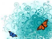 бабочки (85)