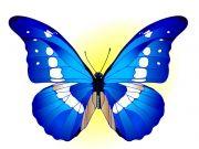 Фотопечать на потолке: Бабочки 12