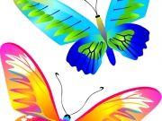 Фотопечать на потолке: Бабочки 15