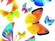 Фотопечать на потолке: Бабочки 2