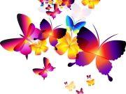 Фотопечать на потолке: Бабочки 26