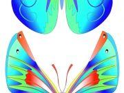 Фотопечать на потолке: Бабочки 36