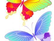 Фотопечать на потолке: Бабочки 37