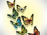 Фотопечать на потолке: Бабочки 49