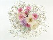 Фотопечать на потолке: Цветы 102
