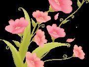 Фотопечать на потолке: Цветы 139
