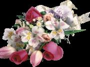 Фотопечать на потолке: Цветы 146