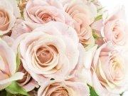 Фотопечать на потолке: Цветы 86