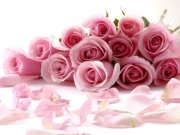 Фотопечать на потолке: Цветы 87