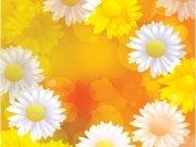 Фотопечать на потолке: Цветы 92