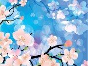 Фотопечать на потолке: Цветы 93