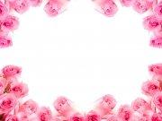 Фотопечать на потолке: Цветы 96