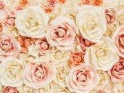 цветы и цветочные композиции (47)