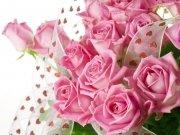 Фотообои на стену: Цветы 2