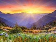 Фотообои на стену: Природа 14