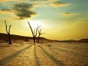 Фотообои на стену: Природа 31