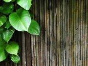 Фотообои на стену: Текстура 35
