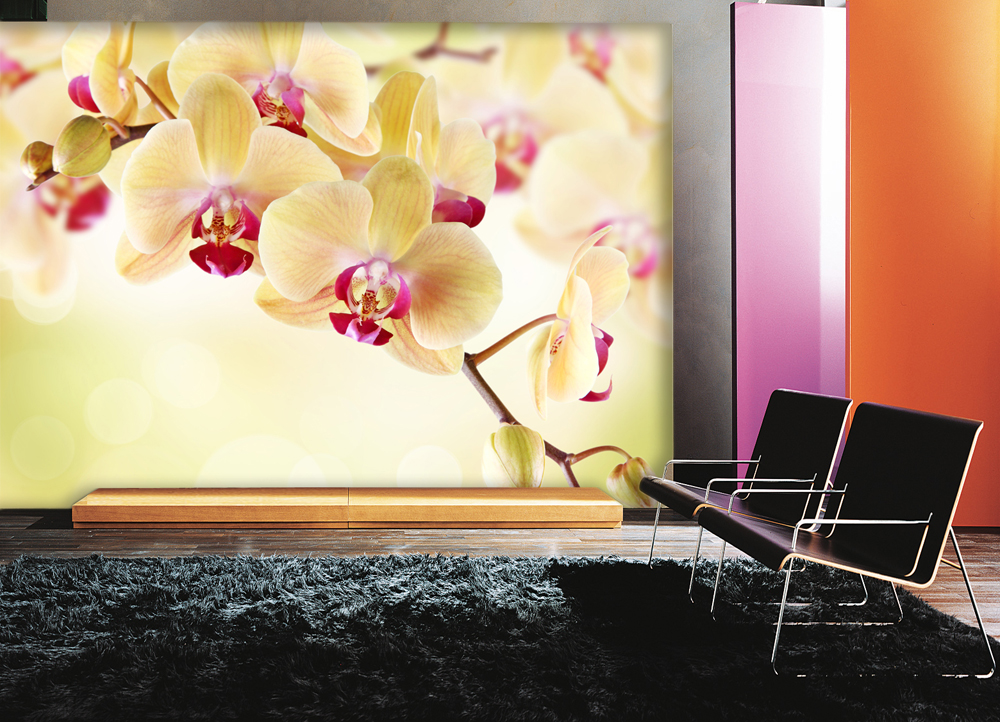 Фотообои на кухне цветы 24