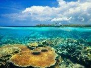 моря и океаны (34)