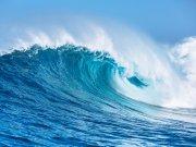 моря и океаны (36)