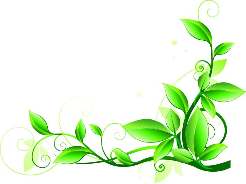 Растительные узоры в png