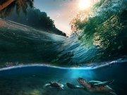 Фотопечать на потолке: Подводный мир (100)