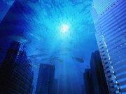 Фотопечать на потолке: Подводный мир (128)