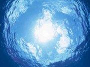 Фотопечать на потолке: Подводный мир (129)