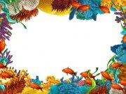 Фотопечать на потолке: Подводный мир (135)