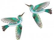 птицы (62)