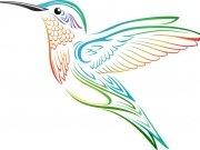 птицы (72)